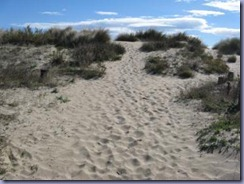 zu Fuß an den Strand 3_366x274