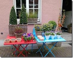 Blumen-Café