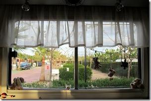 06 Blick aus dem Seitenfenster