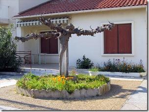 ein Vorgarten