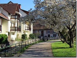 Kirchzarten (1)