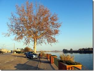 Flitzi am Ebro