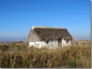 Häuschen im Delta