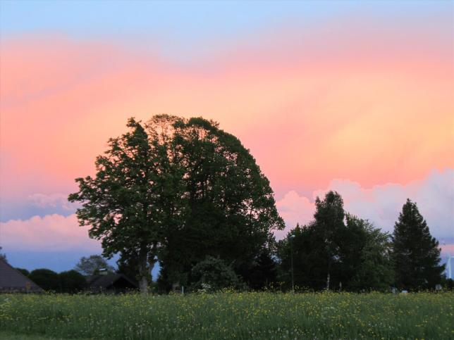 Spiegelung des Sonnenuntergangs (2)