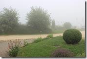 Vorgarten im Nebel