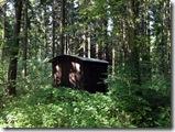 Schäferkarren im Wald
