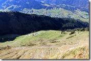 Blick über die Zwerenalpe ins Tal