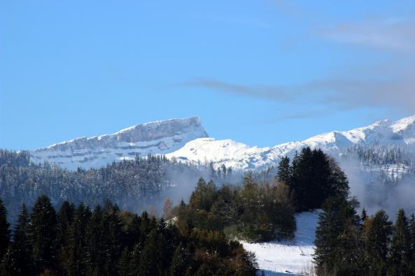 Schnee+Sonne (3)