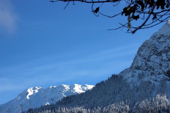 Schnee+Sonne (5)