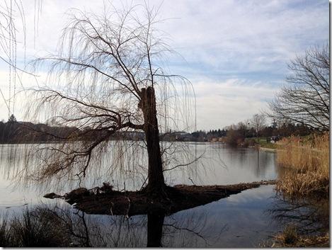 Flückiger See