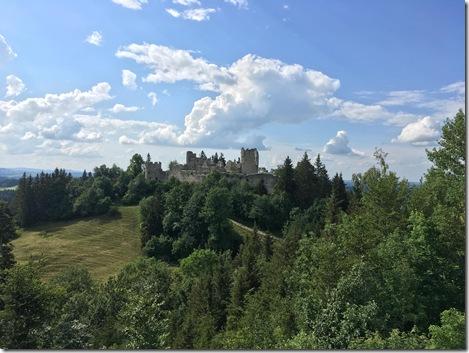 Blick zur Burg Hohenfreyberg