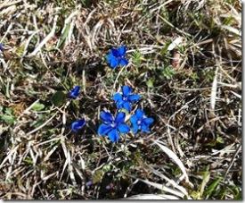Frühlingsbeginn