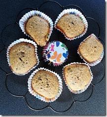 Nuss-Schoko-Muffins