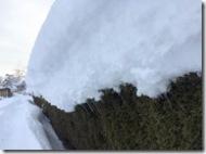 Rekordschneehöhen