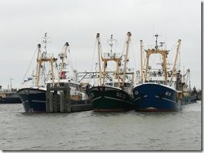 Fischereihafen Lauwersoog